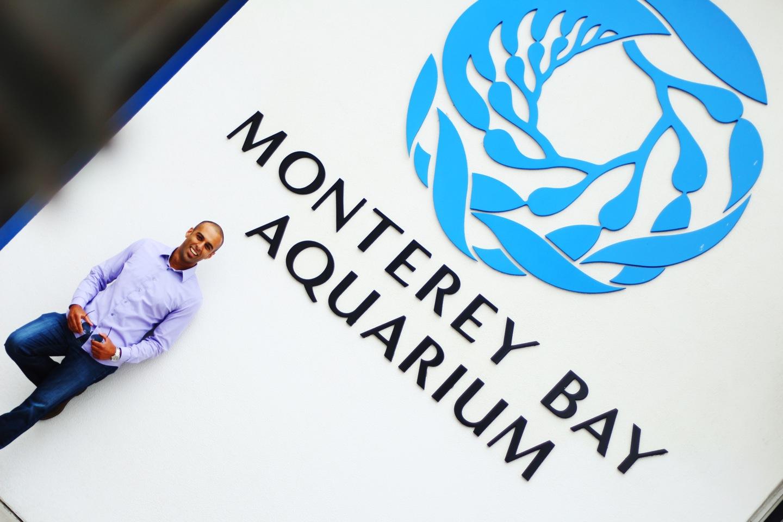 dj aquarium